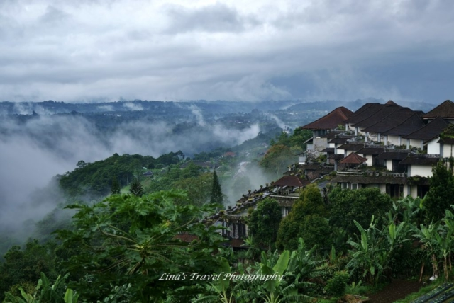 Village in foggy near Blatan Lake, Ubud, Bali, Indonesia