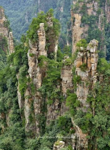 Zhangjiajie - An enlarged bonsai A mini fairyland