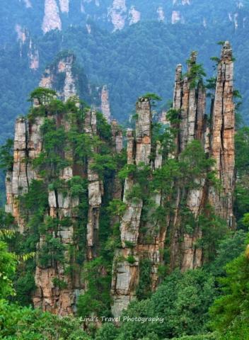Zhangjiajie - An enlarged bonsai A mini fairyland Zhangjiajie, Hunan, China