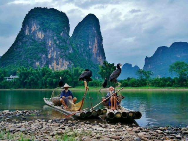 Cormorant fisherman at Li River, Yangshuo, Guangxi, China
