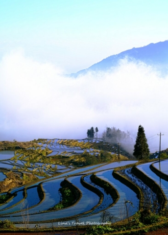 "Sunrise at rice terracces ""Duoyishu"", Yuanyang, Honghe, Yunnan, China"