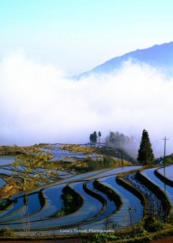 "Sunrise at rice terracces ""Duoyishu"", Yuanyang, Honghe, Yunnan, China"