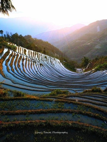 "Sunset at ""One Bowl Water"" Rice Terracces, Yuanyang, Honghe, Yunnan, China"