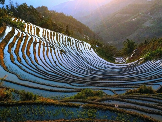"""Sunset at """"One Bowl Water"""" Rice Terracces, Yuanyang, Honghe, Yunnan, China"""