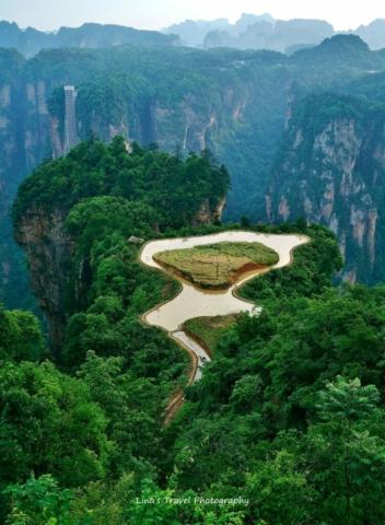Cultivating in the Sky, Wulingyuan, Zhangjiajie National Forest Park, Zhangjiajie, Hunan, China