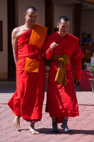 Colourful monks in sunshine, Wat That, Vang Vieng, Laos